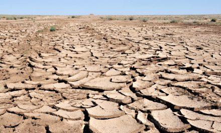 Jsme připraveni na dopady změny klimatu? Vláda spouští akční plán