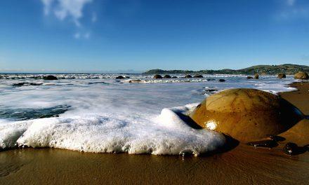 Z kolébky života odpadkový koš? OSN chce zastavit drancování moří a oceánů