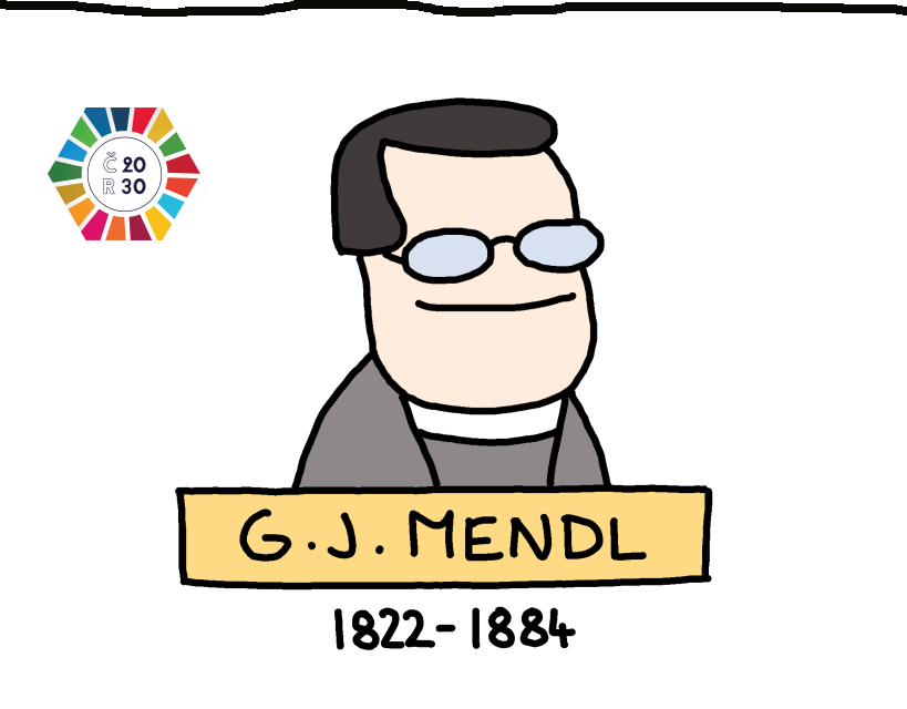 Gregor Johann Mendel: Moravan německé řeči, který odhalil tajemství dědičnosti
