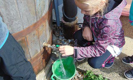 Dešťová a odpadní voda nahradí polovinu pitné vody