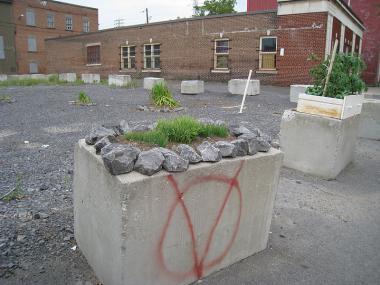 Guerrilla gardening: Zelený městský odboj