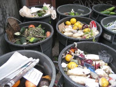 Prodejci nemusejí platit daň zpotravin darovaných potravinovým bankám