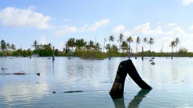Klimatická změna nenápadně ovlivňuje životy milionů