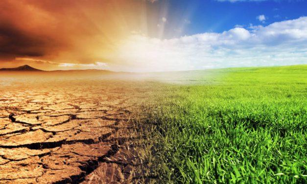 Stát schválil dotace na projekty proti suchu
